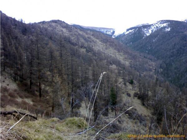 Лог Кызылык