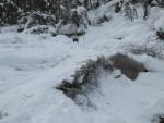 снежный мост на реке Аккем