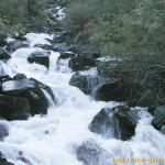 Ручей в долине Ак-Оюк