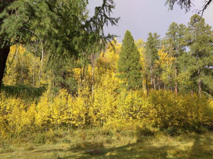 Осень на Башкаусе